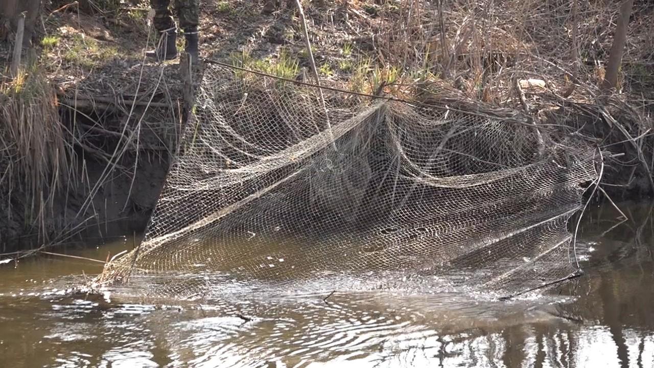 """У селі на Тисмениччині спіймали браконьєра, який ловив рибу """"екранами"""""""